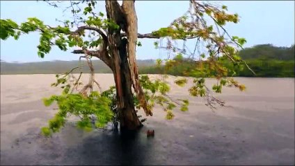 USHUAIA clip des 10 ANS en mars