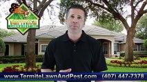 Orlando Pest Control Orlando - 407-447-7378 - Orlando Termite Control - Pest Control Orlando