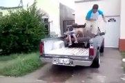Tomber d'un pick-up de façon super classe