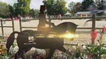 Lorraine Terre de cheval : les finales Dressage et CSO Grand Régional 2014