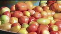 AFRICA NEWS ROOM du 17/02/15 - AFRICA NEWS ROOM du 17/02/15 - Guinée: Le défi de la transformation des produits horticoles en Guinée  Partie 2