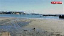 Crozon. Grandes marées : le port de Morgat s'est préparé