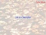 Zuma Deluxe Free Download [Legit Download]