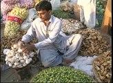 FAO/EU food facility in Pakistan - FAO video news release