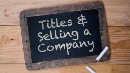 Do Titles Matter in Mergers and Acquisitions?