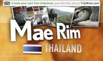 """""""Maesa Elephant Camp"""" Verian's photos around Mae Rim, Thailand (mahut and elephant camp)"""