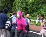 G8 2005 Anarchist Motorway Blockade and Cow Stampede