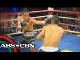 How Azukal, King became boxers