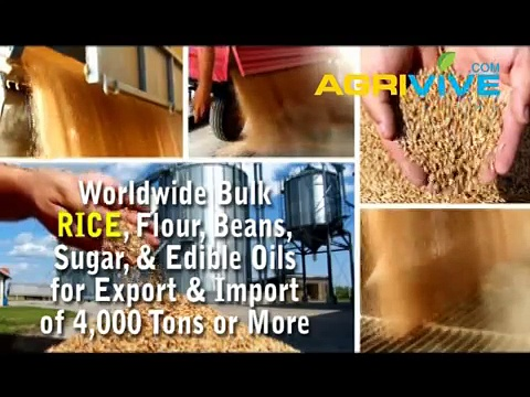 Rice Trading, Rice Trading, Rice Trading, Rice Trading, Rice Trading, Rice Trading, Rice Trading
