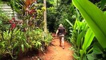 Incredible Tropical Villa in the Jungle of Costa Rica—Mono Lisa