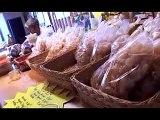 Producteur artisanal de miel !  Vente en ligne de miel  Production de miel de montagne   Auvergne  Massif du Sancy  Acheter du miel