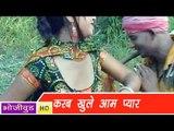 HD करब खुले आम प्यार   Karab Khule Aam Pyaar   Bhojpuri Hot Song भोजपुरी सेक्सी लोकगीत