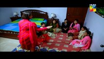 Sartaj Mera Tu Raaj Mera Episode 1 - 23 February 2015 - Hum Tv
