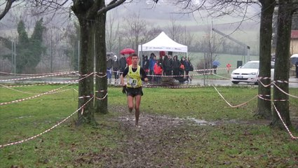 ASSOLUTE e JUNIORES maschile - IMOLA CROSS