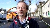 VIDEO. A Vendôme, les arbres du quartier de cavalerie abattus