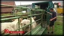 À la rencontre de Frédéric Borne, éleveur de bovins à Écuisses