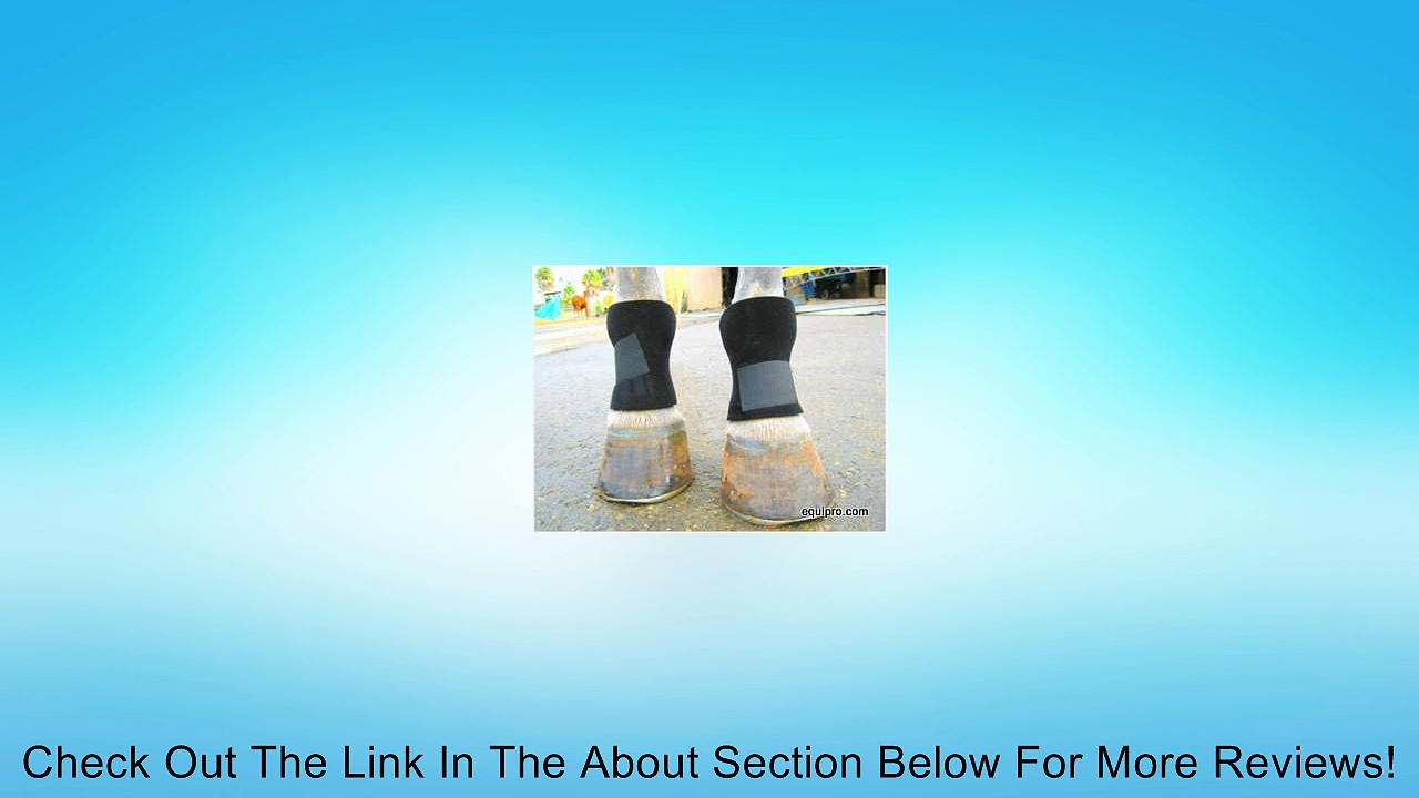 Horse Bed Sore Boots Review