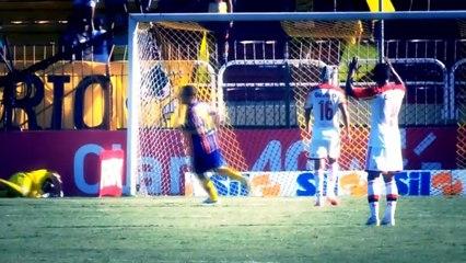 Top 5 Goals - Brazil