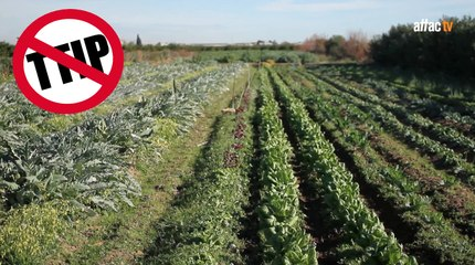 TTIP, agricultura e industria alimentaria / TTIP, agriculture and food industry - Hanny Van Geel