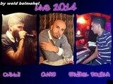 04- chinwi abdelhadi & faysel roubla _samhili ya ma _live décembre 2014 mariage
