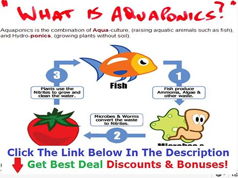 Easy Diy Aquaponics Free Reviews Discount + Bouns