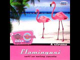Flamingosi - Lumperaj