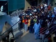 pakistani funny clips New Funny Clips Pakistani 20