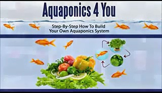 Aquaponics System Plans  Aquaponics 4 You DIY Aquaponics System