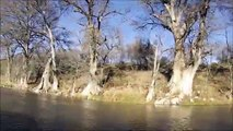 Nick Fly Fishing / With Brad F / Guadalupe River, TX / 12-7-2014 / Brads first time fly f