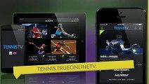 Watch - Alison Riske vs Vera Zvonareva - monterrey wta open - monterrey wta - monterrey tennis wta