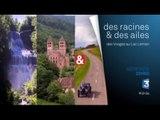 DRDA : Des Vosges au lac Léman – Bande-annonce