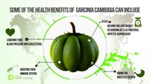 How to Lose Weight Fast - Weight Loss Pills and Tips - Garcinia Cambogia [FREE TRIAL]