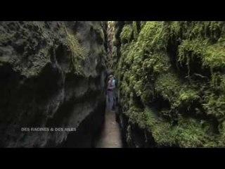 DRDA : Le bonheur est au village - Les canoles du Larzac