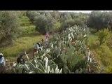 Atlas, le jardin des saveurs - Faut Pas Rêver au Maroc (extrait)