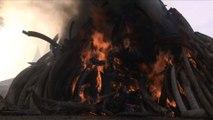Quinze tonnes d'ivoire partent en fumée au Kenya