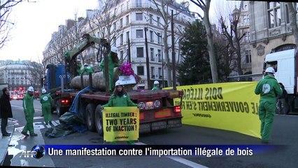 Greenpeace livre 4 tonnes de bois illégal à Ségolène Royal