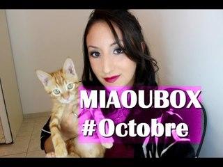 MiaouBox - Octobre 2014 + Test du jouet