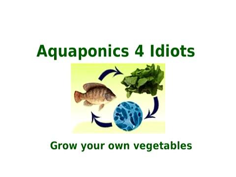 Aquaponics 4 Idiots Guide
