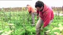 Comment la Province de Hainaut soutient le développement durable?