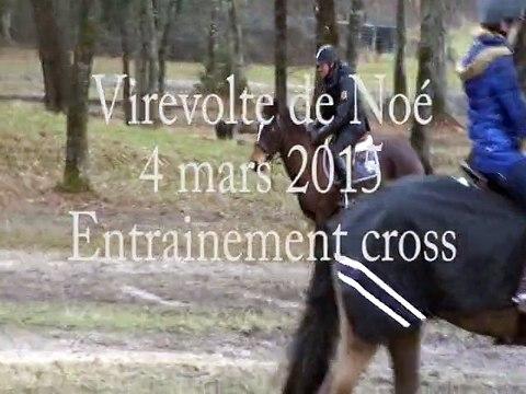 cross-Virevolte-4mars2015