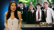 DANIEL RADCLIFFE - ON HARRY POTTER SPINOFF FANTASTIC BEASTS - Entertainment Movies Film Celebrity