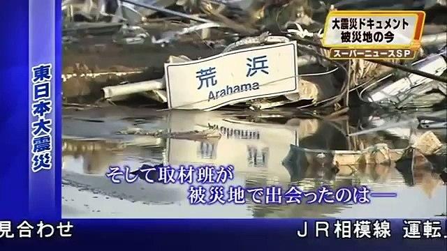 Loyal Dog Won t Leave Injured Friend Behind - HELP JAPAN S LOST & INJURED TSUNAMI PETS