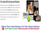 The Online Dog Trainer Discount + Bouns