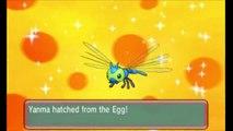 Pokemon ORAS (Alpha Sapphire) EPIC Shiny Egg Hatching Montage! (Pokemon Omega Ruby)