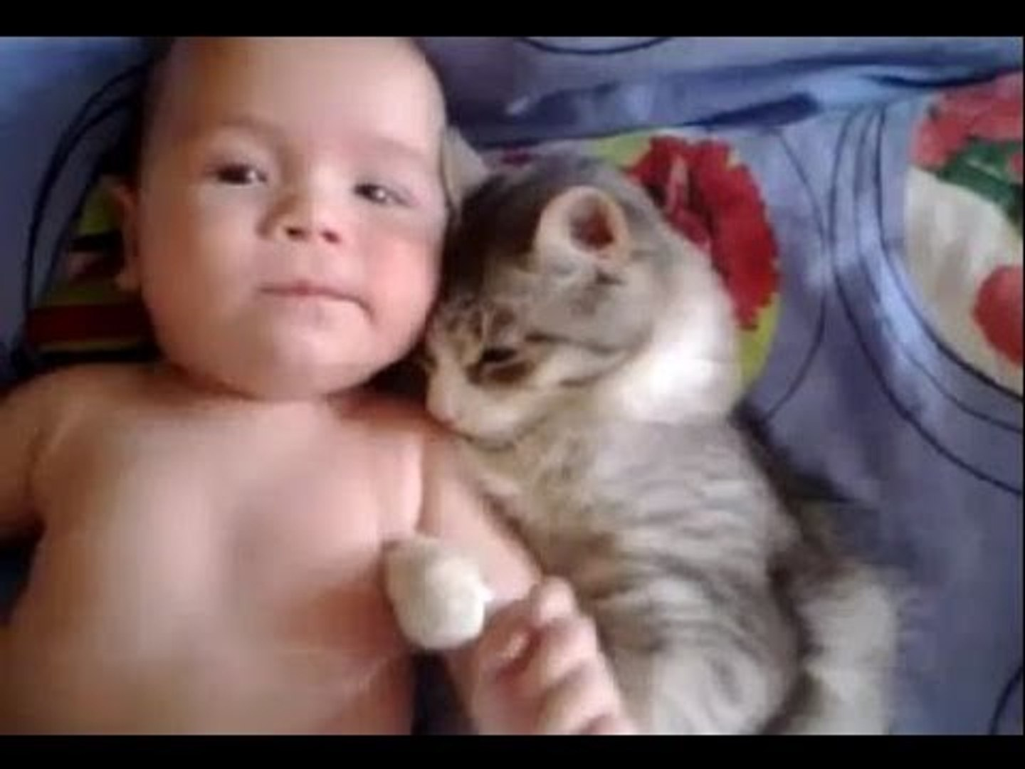 Cute Baby and Cat Videos
