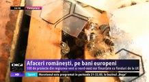 Afaceri românești, pe bani europeni. 100 de proiecte din regiunea vest și nord-vest vor fi finanțate cu fonduri de la UE