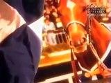 SECRETARIART - HORSE RACING - Discovery History Animals Horses (full documentary)