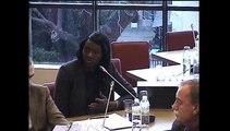 Seybah Dagoma - Audition de M. Laurent Fabius, Ministre des Affaires étrangères et du développement international, le 4 mars 2015