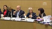Intervention de Danielle AUROI lors de l'audition de Monsieur Laurent Fabius, sur la conférence climat COP21, le 3 mars 2015