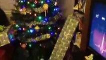 Un fan de Star Wars reçoit des sabres lasers pour Noël